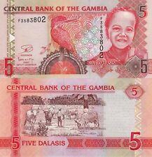 Gambia 5 Dalasi (2013) - Boy/Kingfisher/p25c UNC