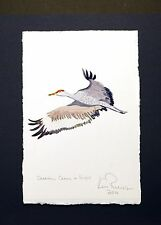 Sandhill Crane in Flight: Ken Richards