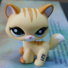 """LPS #2034 COLLECTION Action Figure YELLOW CAT KITTY TOY 3"""" LITTLEST PET SHOP"""