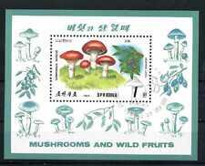 Block Korea 244  o gestempelt Pilze und Pflanzen 1989 BR628