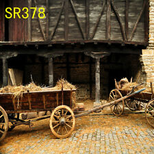 10x10 FT CP (COMPUTER PRINTED) PHOTO SCENIC BACKGROUND BACKDROP SR378