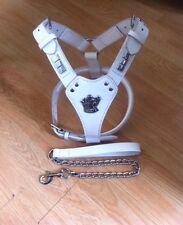 """White Staffordshire Bull Terrier Staff,Leather Harness+Lead 25"""" to 32"""""""