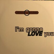 JESTOFUNK • I'm Gonna Love You • Vinile 12 Mix • RNC 001
