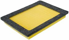 Air Filter Defense CA9687