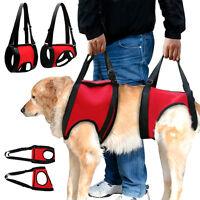 Hundegeschirr Tragehilfe/Gehhilfe vorne für ältere oder kranke Hunde Rot S M L