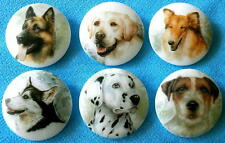 Collection of 6 Czech Glass Decal Buttons #G296 - Different Dogs!