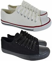 MENS LACE UP FLAT CANVAS PLIMSOLLS GYM PUMPS CASUAL TRAINERS SHOES UK SIZE 6-11