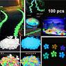 For Aquarium Fish Decor 100PCS Colorful Glow In The Dark Stones Walkway Rock