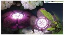 Fiore galleggiante faretto laghetto Sicce mod. FLOWER LED BASIC 3,5W