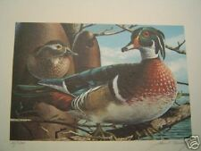 M. Fernandez  Print - Nesting Woodies