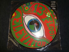 13TH FLOOR ELEVATORS-THE PSYCHEDELIC SOUND OF- PICTURE DISC-VINYL-G22-FLG