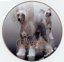Design Aufkleber Chinese Crested Dog / Chinesischer Schopfhund Autoaufkleber