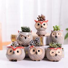 6x Mini Owl Plant Pots Set Flower Succulent Plants Ceramic Pot Lanscape Garden