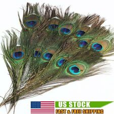 50 PACK Peacock Tail Feathers Natural For Bouquet DIY Decoration 10-12 inch US