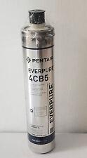 CARTUCCIA EVERPURE 4CB5 EV 961716 FILTRO  22.680lt - 6,3lt/min 5 MICRON