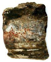 165.4 Gram Banded Arizona Agate Slab Cab Cabochon Gemstone Gem Rough AA3