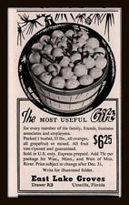 1955 B AD   EAST LAKE GROVES UMATILLA FLORIDA ORANGES GRAPEFRUIT GIFT