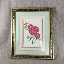 19th C Botanical Engraving Hand Colored Pink Flower Antique Picture Victorian