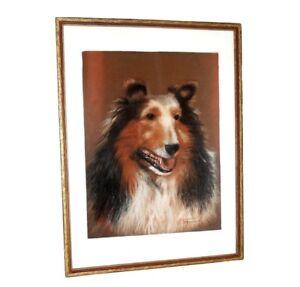 Original Collie Dog Pastel Drawing Mid Century Portrait Painting
