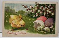 Easter Greetings Embossed Hatched Chick & Ladybug 1909 Postcard B12