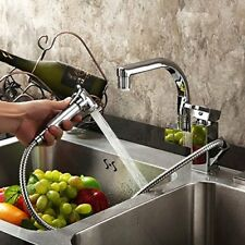 AS Swivel Dual Spout Kitchen Sink Mixer Taps Pull Out Hand Sprayer Brass Faucet