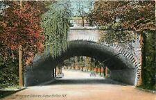 Buffalo New York~Car Under Bridge @ Delaware Ave~Willow, Autumn Trees 1910 PC