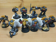10 PLASTIC SPACE MARINES TACTICAL PAINTED (1247)