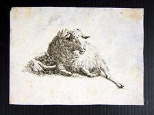 Gravure taille douce XVIII° pas signée,  D - 11,8 x 8,5 cm