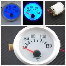 """12V Blue LED 2"""" 52mm Automobile Water Temperature Meter Gauge Celsius For Holden"""