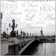 """Creative Imaginations 12"""" x 12""""  Transparency France Paris Travel Overlay"""