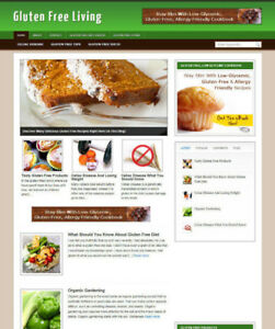 GLUTEN FREE DIET WEBSITE + ARTICLES WITH NEW DOMAIN AND AFFILIATE STORE
