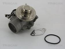 AGR-Ventil TRISCAN für AUDI SEAT SKODA VW 881329001