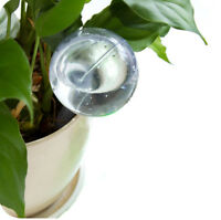Automatic Watering Device Houseplant Plant Pot Bulb Globe Garden House Waterer v