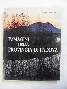 SEMENZATO - IMMAGINI DELLA PROVINCIA DI PADOVA - MANFRINI