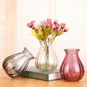 Small Plant Glass Vase Hydroponic Clear Bottle Living Room Tabletop Flower Pot