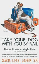 DR03 VINTAGE TAKE YOUR DOG BY RAIL A4 POSTER PRINT