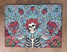 Grateful Dead Skeleton & Roses Stained Glass Rock Vintage Poster Steel Sign Usa