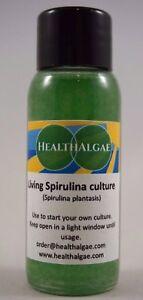 Spirulina platensis starter Living algae start culture (30 ml) for home growing