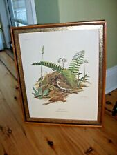 "Ray Harm Framed OVENBIRD 1972 CREST PLATE II 12"" X 15"" SIGNED"