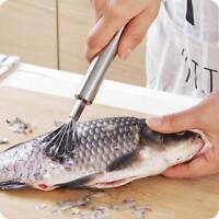 Edelstahl Coconut Schäler Obst Fisch Skala Schaber Küche Gadget