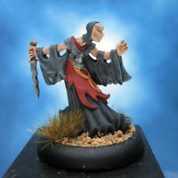 Painted Privateer Press Miniature Iron Kingdoms Umbral Sorcerer