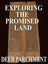 TORAH SCROLL BIBLE VELLUM MANUSCRIPT FRAGMENT 150 YRS YEMEN Numbers 12:8-14:16