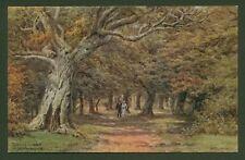 A.R.Qinton. Queen's Bower, near Brockenhurst - Artist Drawn Oil Effect Postcard
