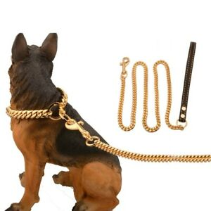 10mm Big Dog Super Gold Collar Metal Stainless Steel Chain Collar with Leather