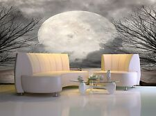 Forest  Full Moon  Wall Mural Photo Wallpaper GIANT WALL DECOR Paper Poster