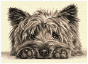 CAIRN TERRIER dog - complete counted cross stitch kit *Jann Designs