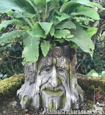 Face in Old Tree Stump heavy duty fibreglass garden planter decoration ornament