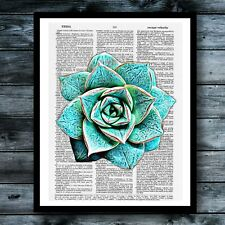 Cactus Dictionary Art Print Succulent Vintage Poster Modern Cool Room Wall Decor