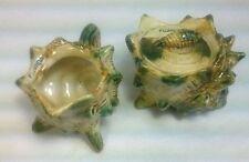 Florida Conch Sea Shell Pottery Creamer & Covered Sugar Bowl Japan G Nov Co