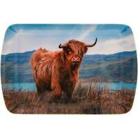 Highland Cow Acrylique Bleu Rouge Snack Nourriture Fête Plateau Service Cadeau